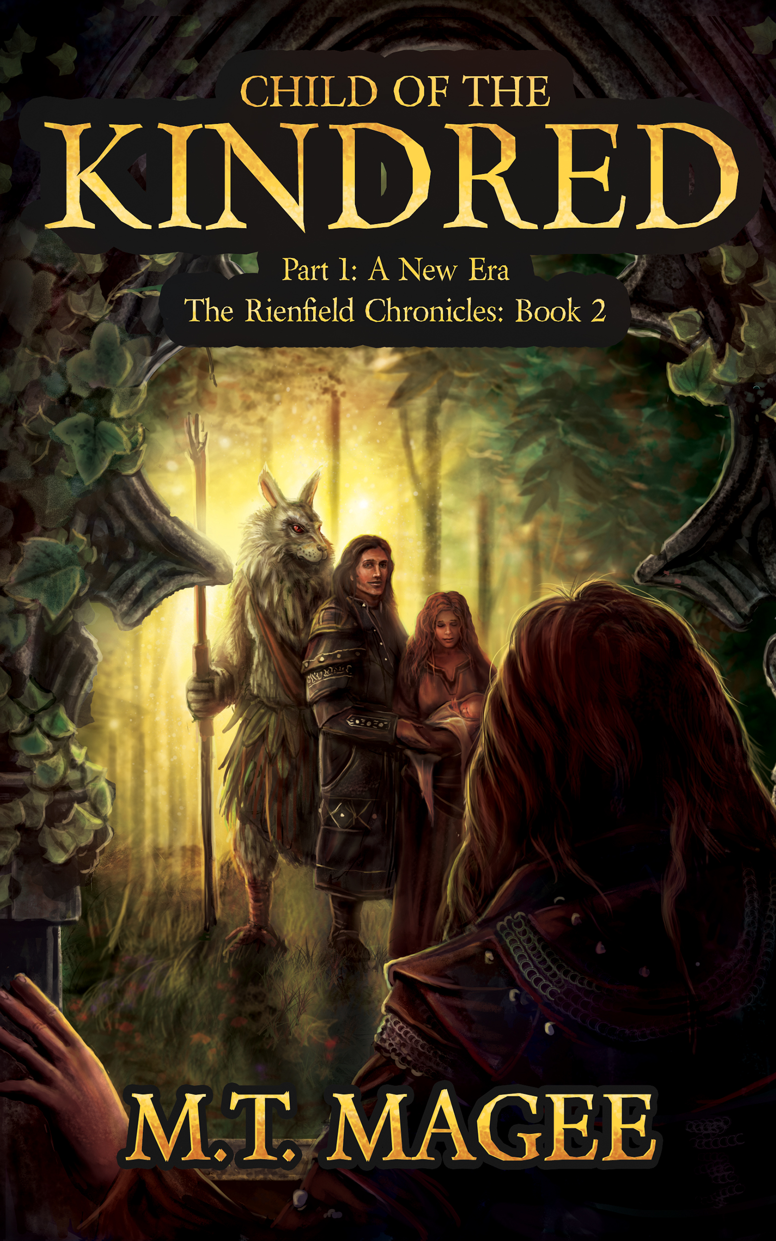 Book Cover Fantasy Explanation : Fantasy book covers the rienfield chronicles noble